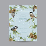 Christmas Card with Winter Birds Royalty Free Stock Image