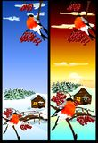 Christmas card with a winter landscape. (Vector) Royalty Free Stock Photography
