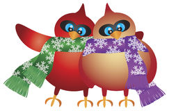 Christmas Cardinal Pair with Snowflake Scarf Royalty Free Stock Photos
