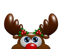 Christmas cartoon reindeer with holly looking up over white Royalty Free Stock Image