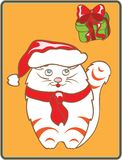 Christmas cat Stock Photography