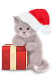 Christmas cat. Illustration of a kitten and a red gift box Royalty Free Stock Image