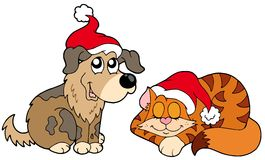 Christmas Cat And Dog Royalty Free Stock Photography