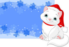 Christmas cat background Stock Images