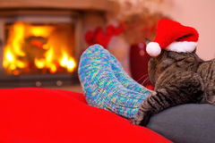 Christmas cat by the fireplace. Woman relaxes by warm fire and warming up her feet in woollen socks.Seated Gray Cat with Santa hat and a fireplace.Christmas cat Stock Photos