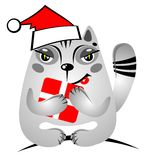 Christmas cat with gift Stock Images