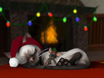 Christmas Cat and Mouse Royalty Free Stock Photos