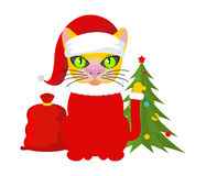 Christmas Cat. Pet in Santa Claus hat. Red bag with gifts. New Y Stock Photography