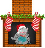 Christmas Cat Stocking Royalty Free Stock Image