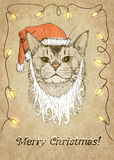 Christmas Cat. Vector illustration, eps10. Royalty Free Stock Photo