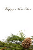 Christmas cedar branch and cone. On a white background it is isolated Royalty Free Stock Photos
