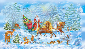 Christmas celebrations.Santa  in  winter in  snow wood. Horses. Animals Stock Photos