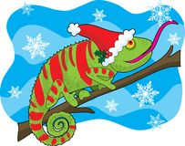 Christmas Chameleon Stock Image