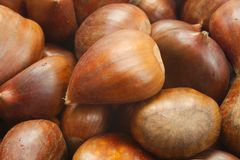 Christmas Chestnuts Royalty Free Stock Photography