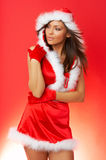 Christmas Chick Royalty Free Stock Photo