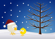 Christmas - Chick and rooster. In the snow Stock Photo