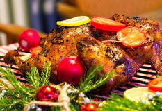 Christmas chicken Royalty Free Stock Images