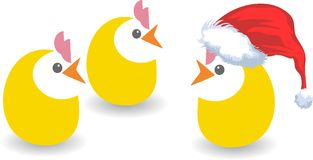Christmas chickens Royalty Free Stock Photos
