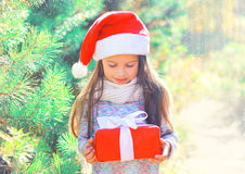 Christmas child little girl in santa red hat with gift box near branch tree Royalty Free Stock Photo