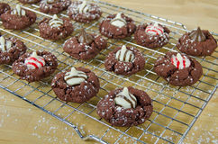Christmas chocolate cookies with candy Royalty Free Stock Photography