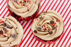 Christmas chocolate cupcakes with cream cheese frosting and spri Stock Images