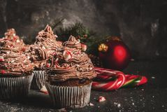 Christmas chocolate peppermint cupcakes. Christmas sweets and desserts, Chocolate peppermint cupcakes with candy cane crumbs, on black background with Christmas royalty free stock images