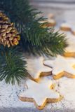 Christmas cinnamon star with branch and cone royalty free stock photos