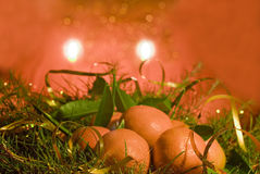 Christmas clementines. Fruits in candle light on christmas Stock Photography