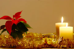 Christmas Coffee. Christmas background with poinsettia, two candles, golden tinsel and cup of coffee Stock Photos