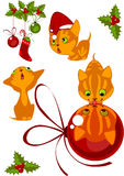 Christmas Collection kittens 1 Royalty Free Stock Photo