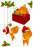 Christmas Collection kittens 2 Stock Image