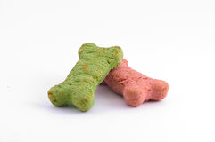 Christmas colored dog treats Stock Images