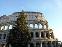 Christmas colosseum. Beautiful view of The colosseum in Rome at sunset with a big christmas tree on The Side Stock Photos