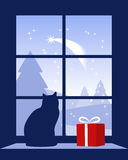 Christmas comet outside window. Illustrated Christmas comet outside window Stock Photography