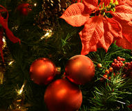 Christmas coming. Christmas traditional red wood and green tree Royalty Free Stock Image