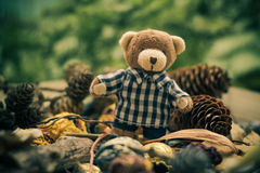 Christmas coming teddy bear green conifers cones Royalty Free Stock Photo