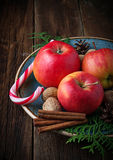 Christmas composition with apples, nuts and cinnamon Royalty Free Stock Photos