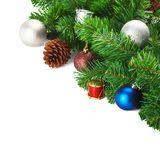 Branches ornament on a isolated white background royalty free stock photo