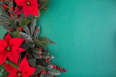 Christmas composition. Christmas green decorations, fir tree branches with red flowers on green background. Flat lay. Top view, copy space stock photos