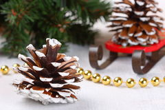 Christmas composition with cones Royalty Free Stock Photos