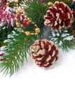 Christmas composition with fir branches and red cones Royalty Free Stock Images