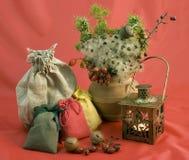 Christmas composition with lantern. Sacks and dried plants Stock Photo