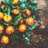 Christmas composition with mandarine and falling snow flakes. Stock Photography