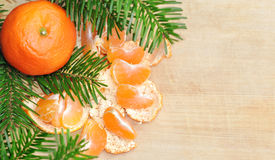 Christmas composition with mandarins and fir tree on wood Royalty Free Stock Image