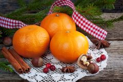 Christmas composition with oranges Stock Photos