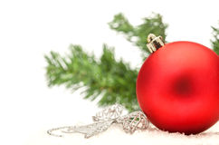 Christmas composition with red ball and a branch Stock Image