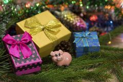 A figurine of the symbol of the new year 2019 is a pig and box boxes of New Year`s gifts. royalty free stock image