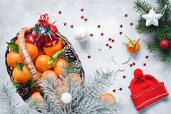 Christmas composition with tangerines in basket, red winter hat, pine cones, fir tree and toys on bright concrete. Background. Top view stock photography