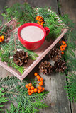 Christmas composition with trees, hot chocolate and cookie Stock Photos