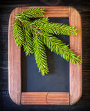 Christmas composition in vintage style. Spruce branch on the chalkboard Stock Photography
